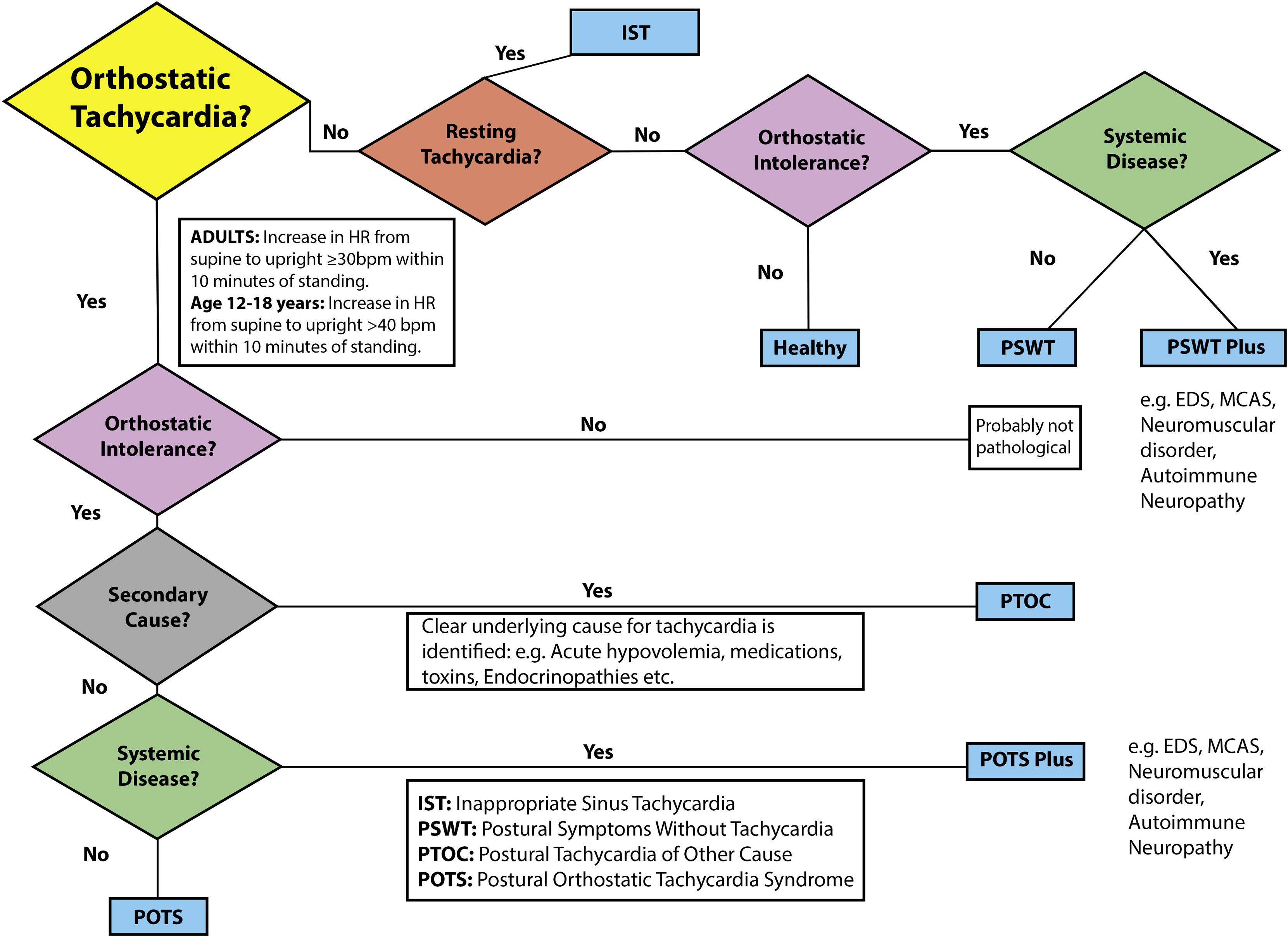 Postural orthostatic tachycardia syndrome (POTS) diagnostic criteria algorithm: a flow algorithm to help clinicians navigate the diagnosis of POTS and related disorders of orthostatic intolerance and orthostatic tachycardia. bpm, beats per minute; EDS, Ehlers-Danlos syndrome; HR, heart rate; IST, inappropriate sinus tachycardia; MCAS, mast cell activation syndrome; PSWT, postural symptoms without tachycardia.